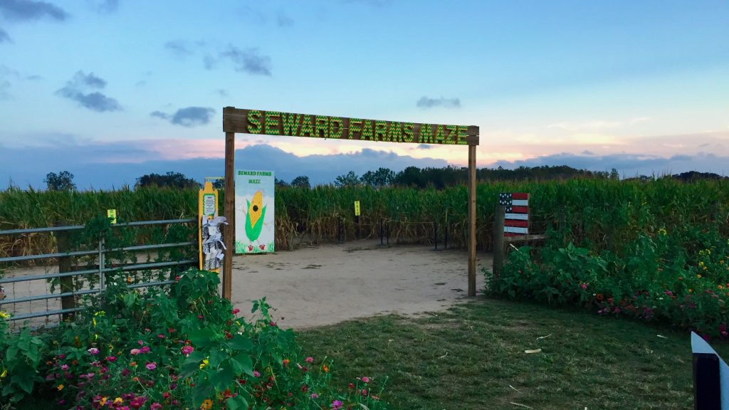Sewards Farms Maze